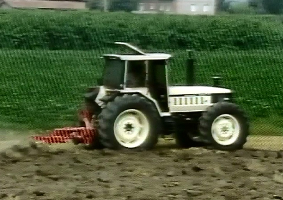 Cultivating maize