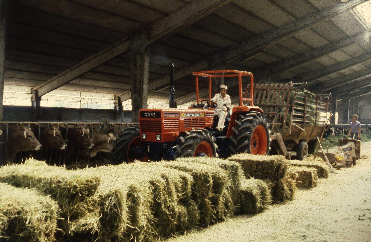 [SAME] trattore Drago 120 con rimorchio carico di fieno in una stalla