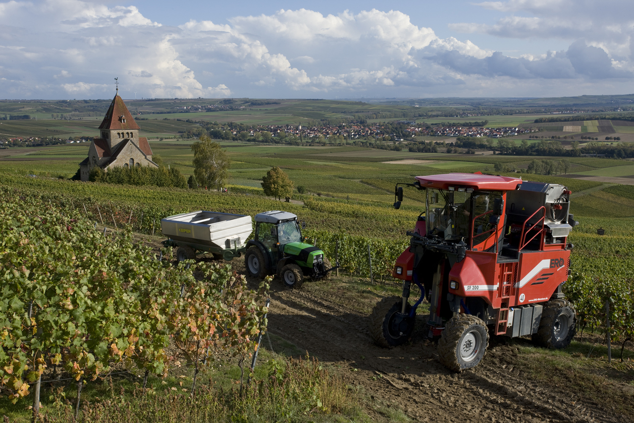 [Deutz-Fahr] trattore modello Agroplus al lavoro con rimorchio durante la vendemmia presso Gau-Bickelheim