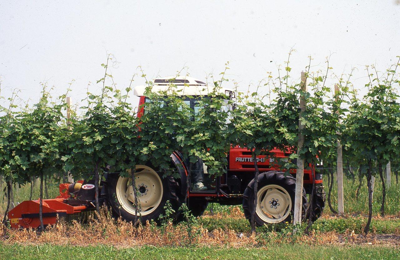[SAME] trattore Frutteto II al lavoro