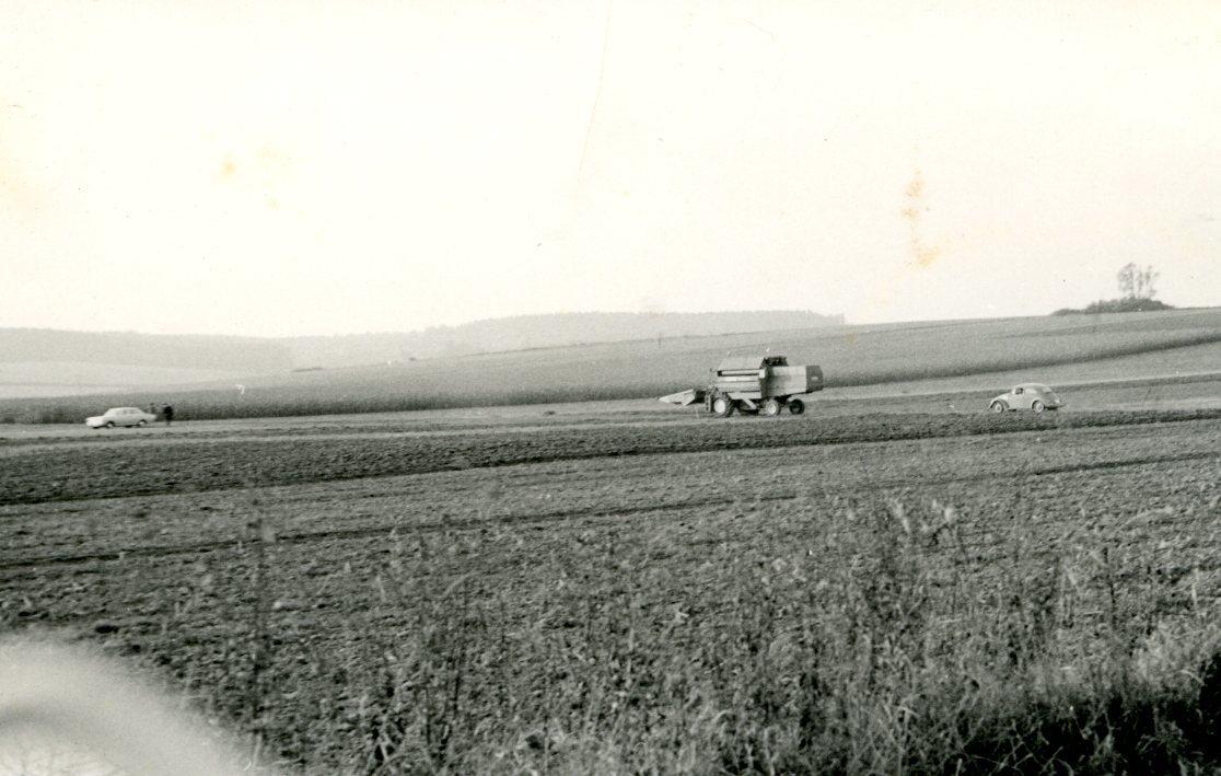[Ködel & Böhm] Mietitrebbia Köla Hydromat prove in campo