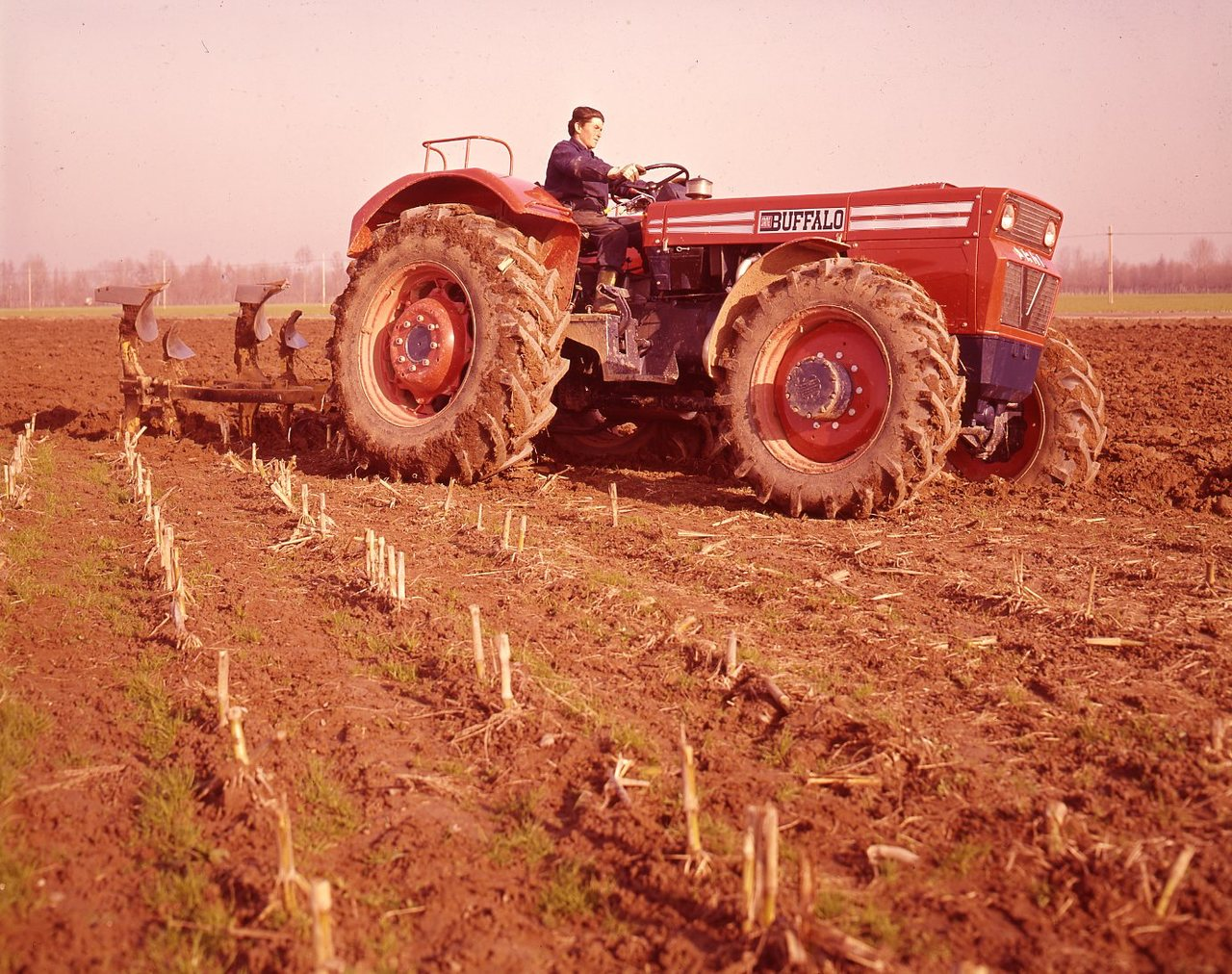 [SAME] trattore Buffalo al lavoro con aratro