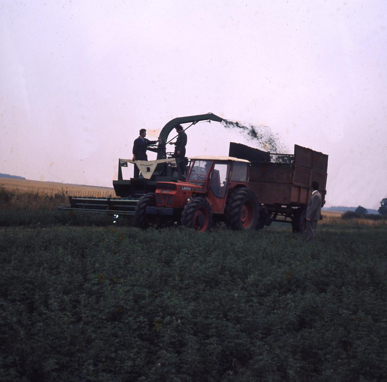 [SAME] trattore Leone al lavoro