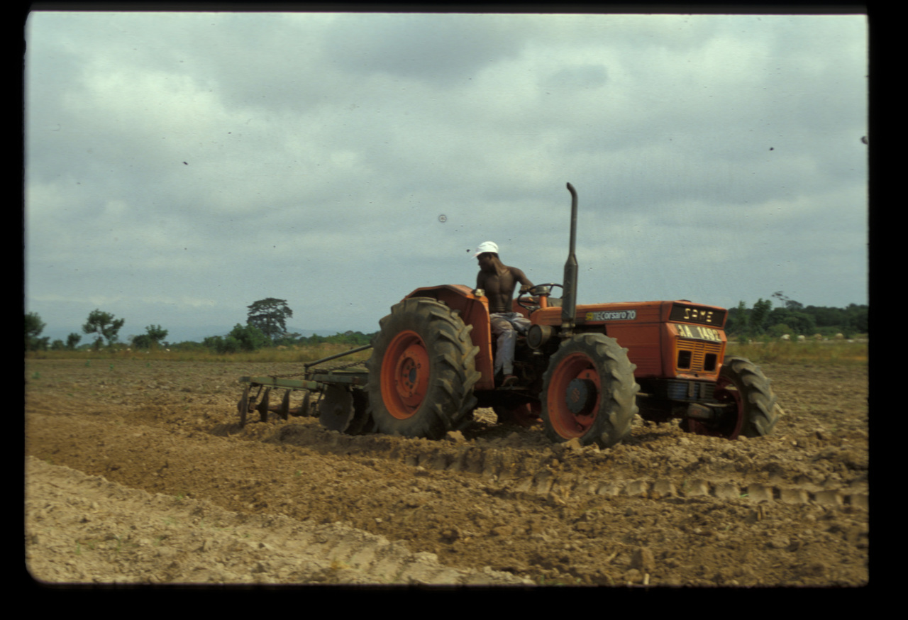 [SAME] trattore Corsaro 70 al lavoro in una azienda agricola africana
