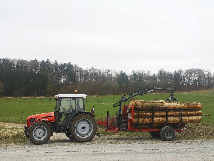 [SAME] trattore Dorado 70 al lavoro con rimorchio per il trasporto di legna