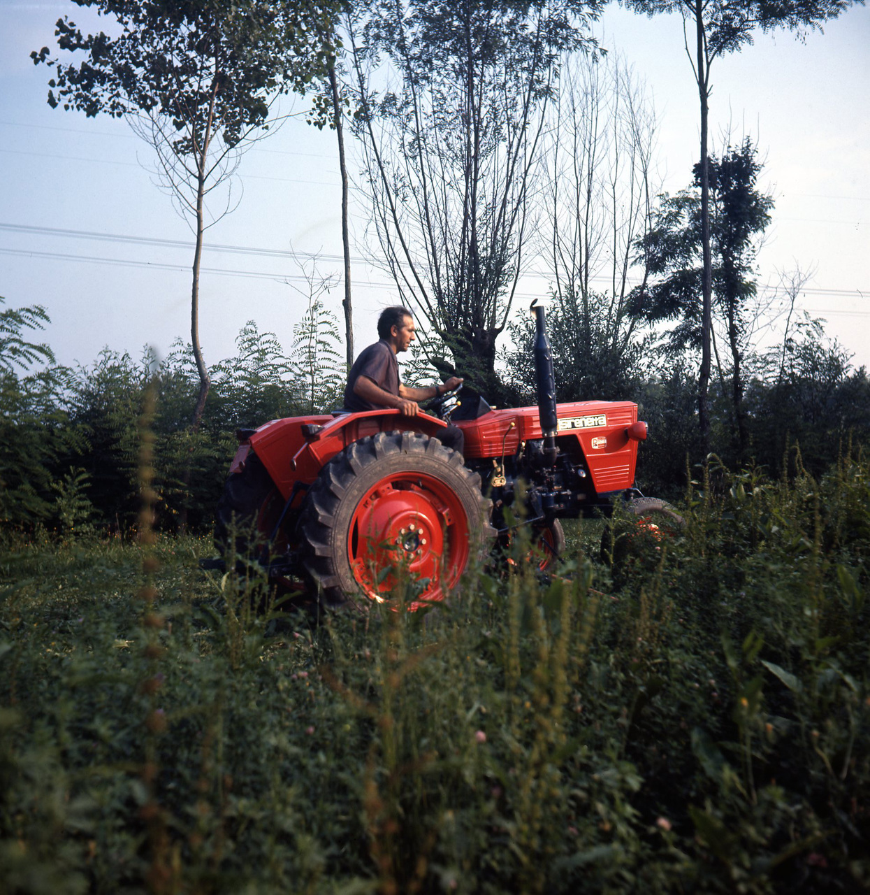 [SAME] Sirenetta 2RM presso Az. Luigi Nicodemo di Teglio Veneto (Venezia) - 15/7/1972