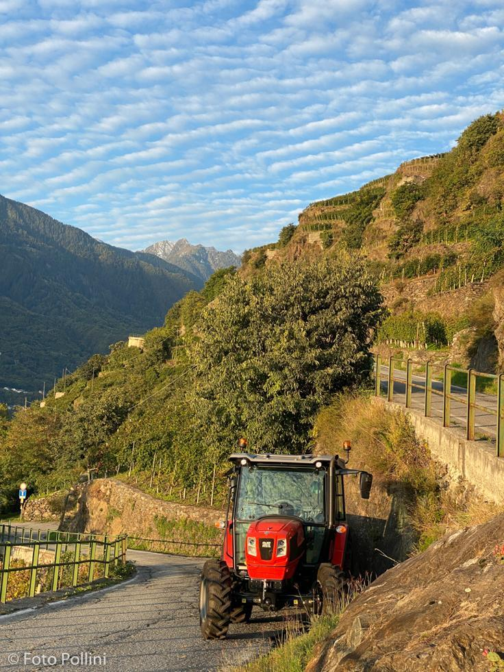 [SAME] trattore Argon durante la vendemmia in Valtellina