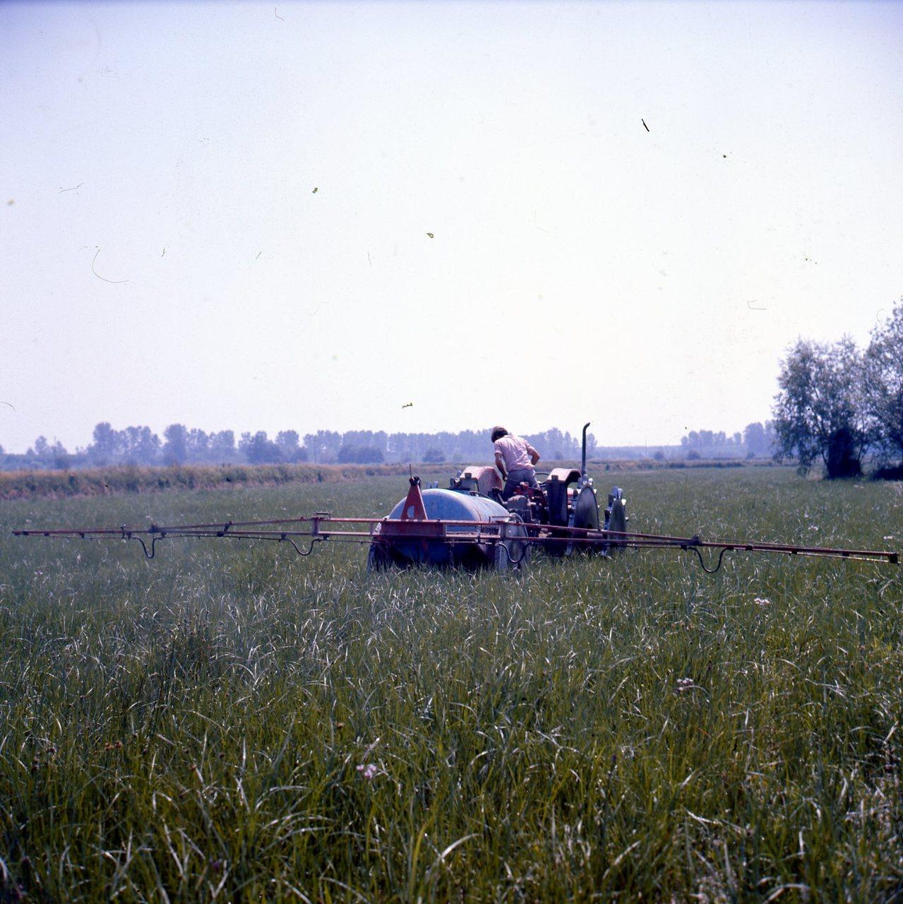 [SAME] trattore Saturno 80 al lavoro in risaia