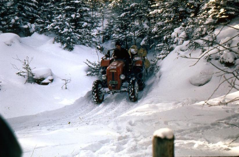 [SAME] Traino di tronchi su neve effettuato da un SAME 240 e SAME 250