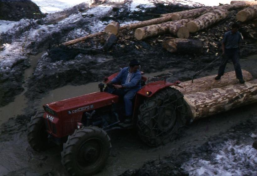[SAME] Traino di tronchi effettuato da un SAME Centauro sulle Alpi svizzere