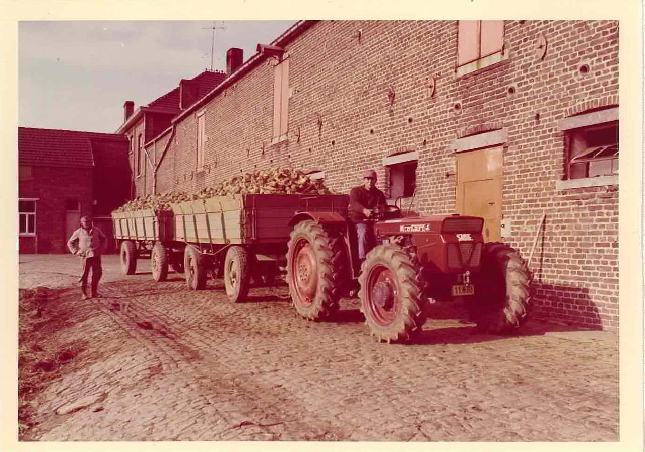 Trattore SAME Centauro al lavoro in Belgio con rimorchi per il trasporto delle barbabietole