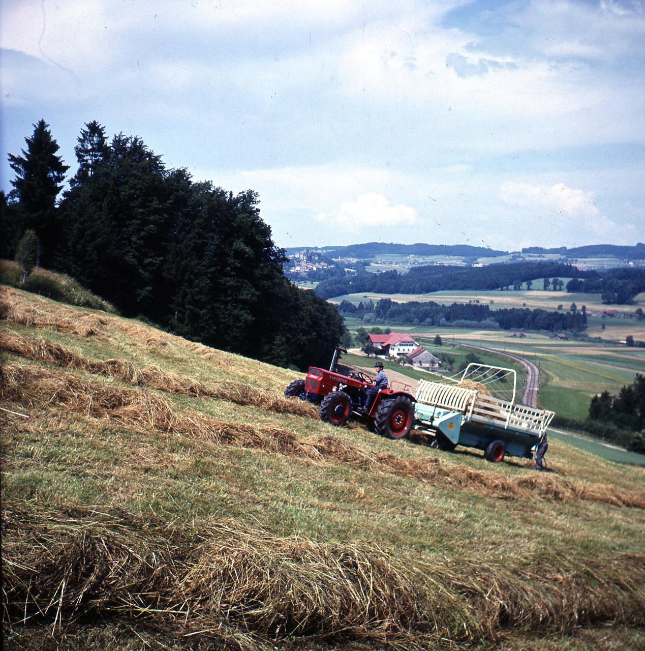 [SAME] trattore SAME Centauro durante della raccolta del fieno
