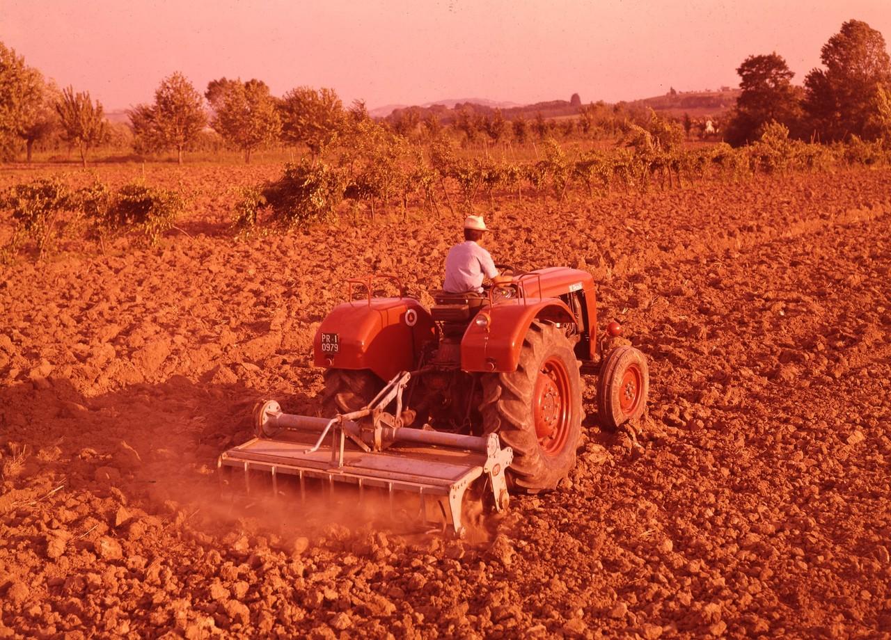 [SAME] SAME Ariete in lavoro di fresatura, Parma - 8/8/64, (Preparazione terreni)