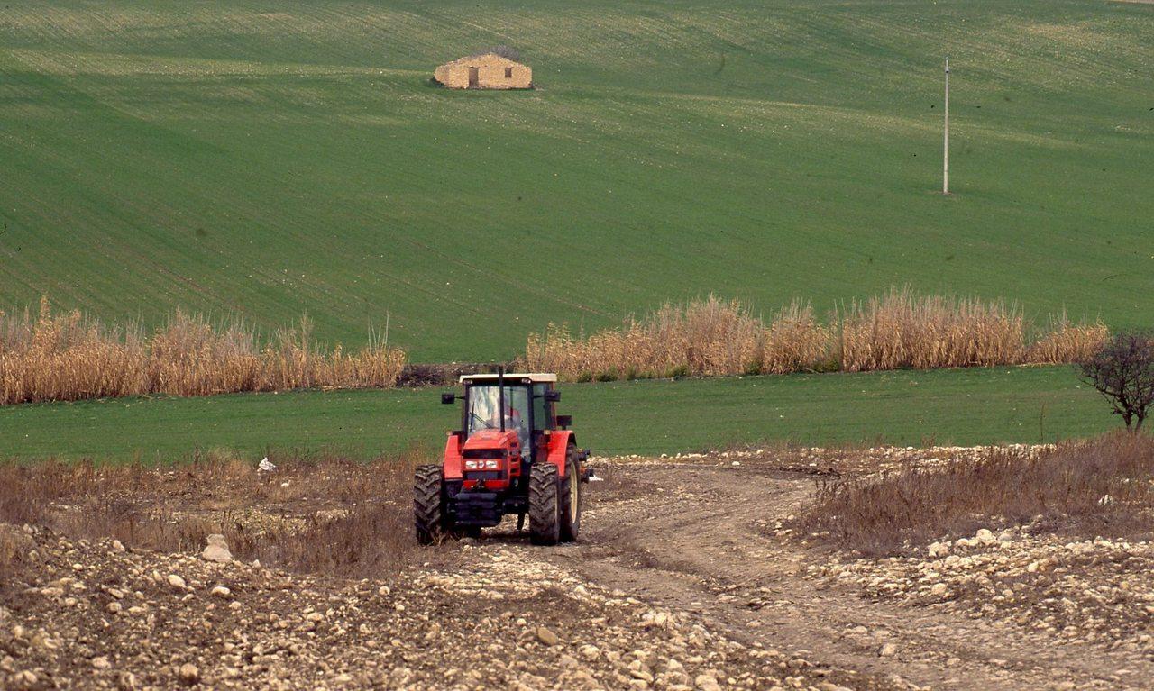 [SAME] trattore Antares 130 in campo