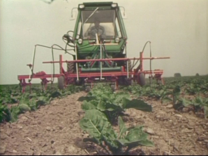 Im Rübenbau mit INTRAC SYSTEM 2000