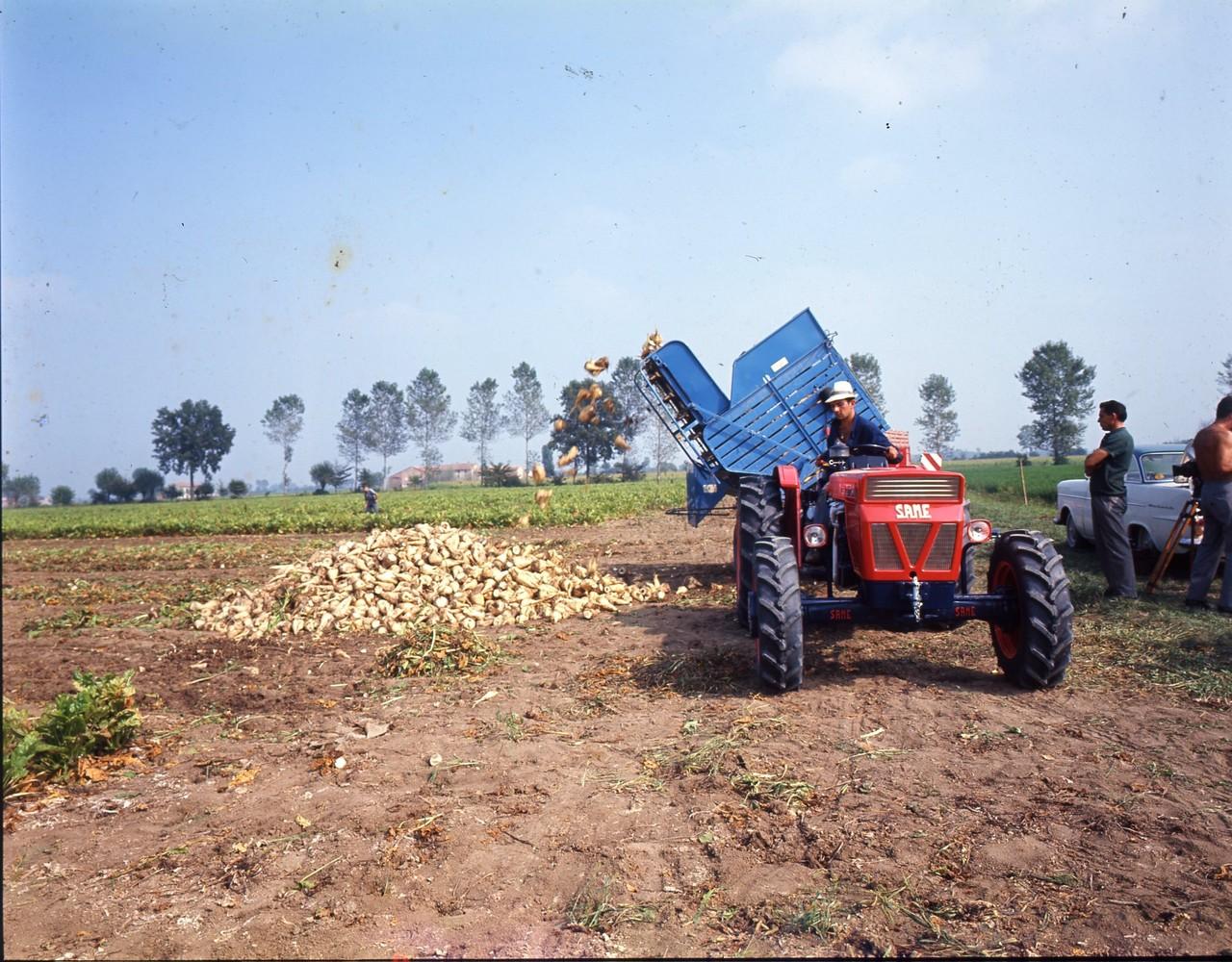 [SAME] Fotocolor Centauro e Leone in raccolta barbabietole a Piacenza, 7/9/66