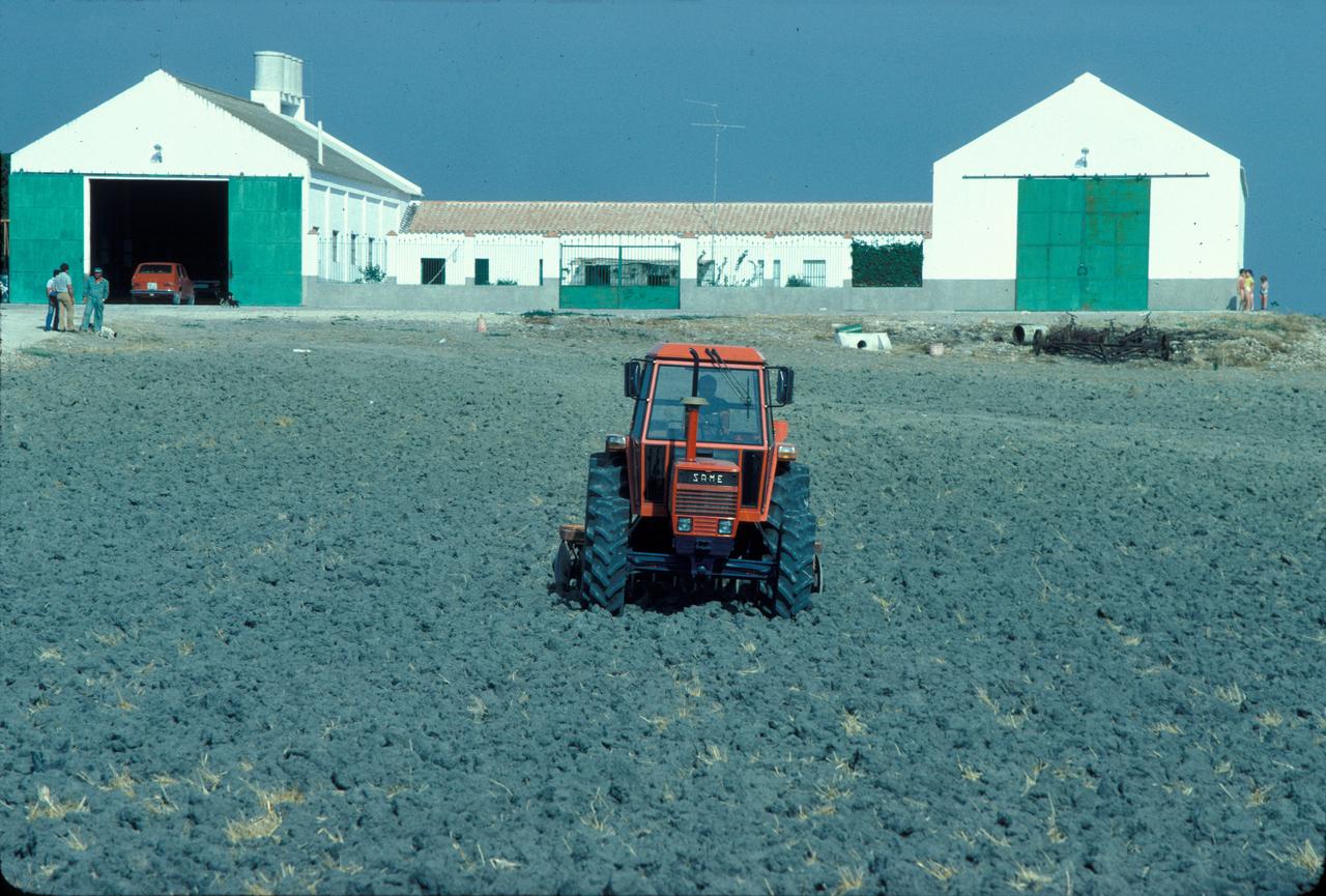 [SAME] trattore Buffalo 130 al lavoro con erpice