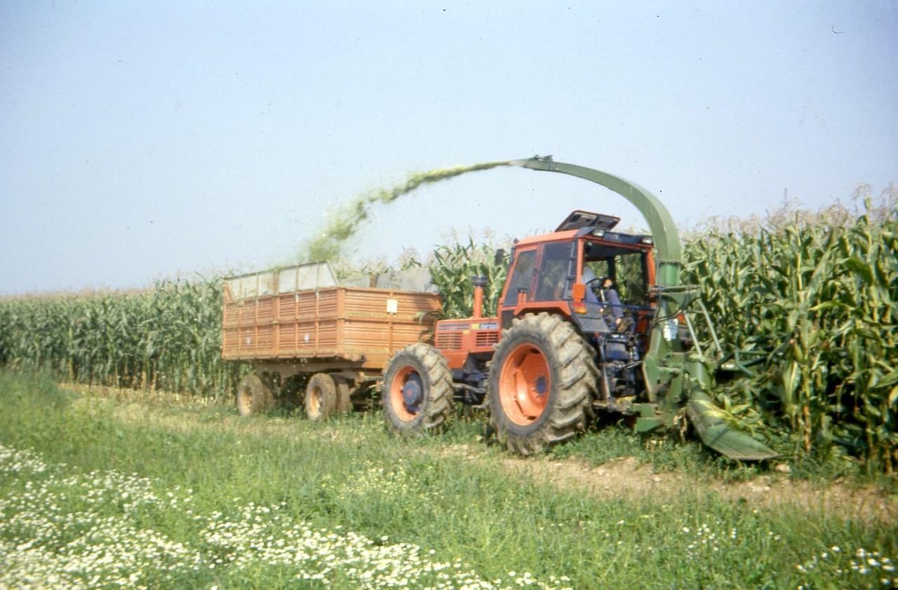 [SAME] trattore Hercules 160 durante la raccolta del granoturco