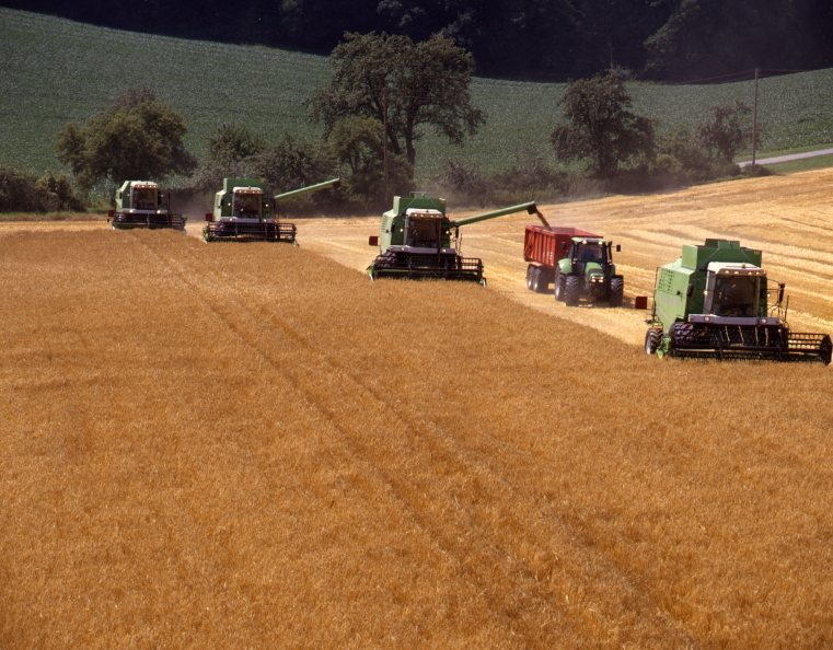 [Deutz-Fahr] mietitrebbie e trattore Agrotron al lavoro