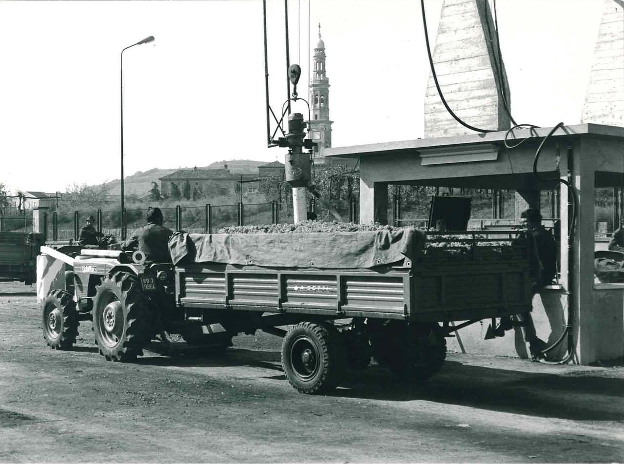 Trattore modello DELFINO 35