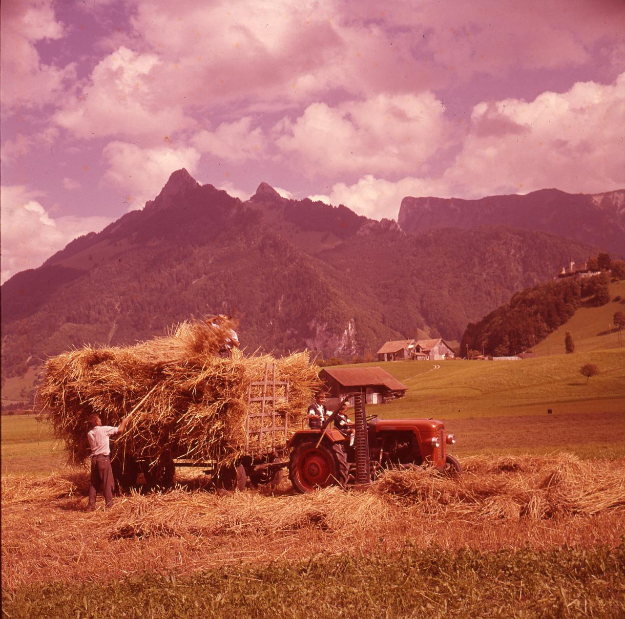 [SAME] Trattori Same in Svizzera - 1/9/61