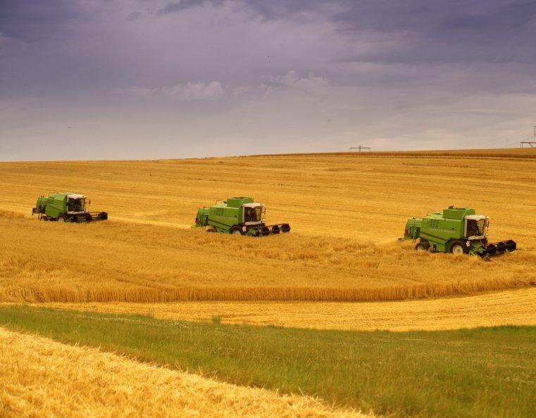 [Deutz-Fahr] mietitrebbie 5565 H, 5465 H e 5585 H e trattore Agrotron con rimorchio al lavoro